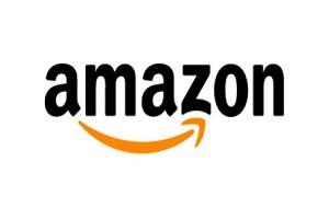Американская компания, крупнейшая в мире по обороту среди продающих товары и услуги через Интернет и один из первых интернет-сервисов, ориентированных на продажу реальных товаров массового спроса