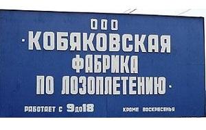 Фабрика лозоплетения в деревне Кобяково Одинцовского района ― один из первых бизнес-проектов, которыми занялось семейство Навальных, и пока самый успешный, если не считать юридического бизнеса. Основанная еще в 30-х гг. прошлого столетия, фабрика успела побывать промартелью, колхозами имени Сталина и «Путь к коммунизму», мебельным производством ― пока в конце 1993 г. не стала частным предприятием, принадлежащим семье Навальных.