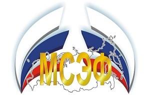 Молодёжный союз экономистов и финансистов — общероссийская общественная организация организованная молодыми экономистами и финансистами, студентами экономических Вузов и факультетов, молодыми специалистами, учёными и преподавателями из большинства регионов России