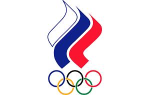 Организация, представляющая страну в международном олимпийском движении, национальный олимпийский комитет (НОК) России. Без признания НОК Международным олимпийским комитетом национальные команды не допускаются к участию в Олимпийских играх