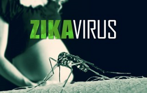 Вирус Зика — вид вирусов рода Flavivirus (семейство Flaviviridae), переносимый комарами рода Aedes. У людей вызывает одноимённое заболевание, характерными симптомами которого являются сыпь, утомление, головная и суставная боль, лихорадка, опухание суставов. Вирус открыт в 1947 году, после чего в течение 60 лет было описано лишь 15 случаев заболевания в Чёрной Африке и Юго-Восточной Азии. В 2007 году с острова Яп началось распространение вируса на восток через Тихий океан. В 2014 году вирус достиг Новой Каледонии, островов Кука, Французской Полинезии, в 2015 году — острова Пасхи и Южной Америки, Центральной Америки, Вест-Индии. В настоящее время имеет статус пандемии. Заболевание похоже на лёгкую форму лихорадки денге, также родственно жёлтой лихорадке и лихорадке Западного Нила. Специфичных лекарств или вакцин против вируса Зика не существует