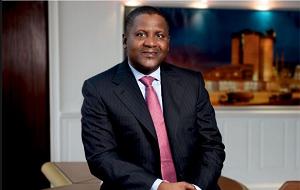 Владелец компании «Dangote Group», которая осуществляет свою деятельность на территории Нигерии и странах Западной Африки. Он ярый сторонник режима президента Олусегуна Обасанджо и правящей в данный момент Народной Демократической Партии