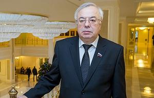 Член Комитета Совета Федерации по Регламенту и организации парламентской деятельности. Представитель от законодательного (представительного) органа государственной власти Ивановской области