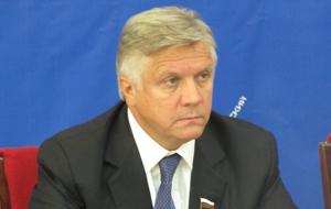Член Комитета Совета Федерации по Регламенту и организации парламентской деятельности. Представитель от исполнительного органа государственной власти Калужской области