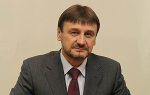Член Комитета Совета Федерации по науке, образованию и культуре. Представитель от исполнительного органа государственной власти Нижегородской области