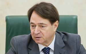 Заместитель председателя Комитета Совета Федерации по экономической политике. Представитель от законодательного (представительного) органа государственной власти Кемеровской области