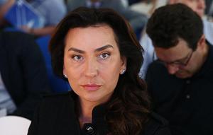 Российский журналист и публицист. С 14 февраля 2017 президент фонда «Справедливая помощь», созданного погибшей в авиакатастрофе Елизаветой Глинкой.