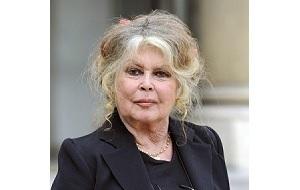 Французская актриса, певица и общественный деятель