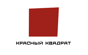 Российский телевизионный холдинг