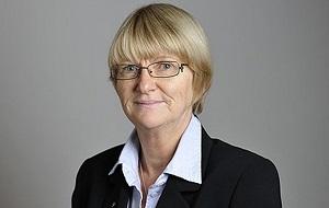 Экс-член шведского парламента (Партия умеренных), экс-глава шведской делегации в ПАСЕ