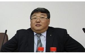 Исполнительный директор Олимпийского комитета