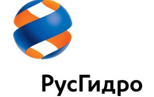 Российская энергетическая компания