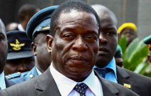 Зимбабвийский государственный деятель, политик. Исполняющий обязанности президента Зимбабве с 21 ноября 2017 года.