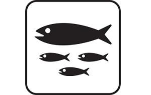 Поставки охлаждённой и свежемороженой рыбы с Сейшельских островов (Индийский океан). Наша рыбообрабатывающая фабрика с 1995 года поставляет продукцию на европейский рынок (Германия,Франция,Великобритания). Фабрика расположена в порту Виктория (остров Маэ)